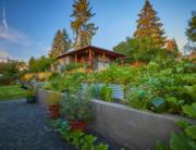 Friendly Area Backyard | Outdoor Space